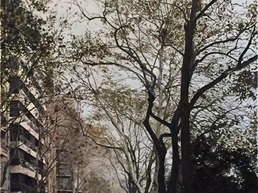La ciudad respira