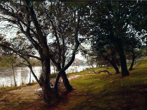 Ribera 2